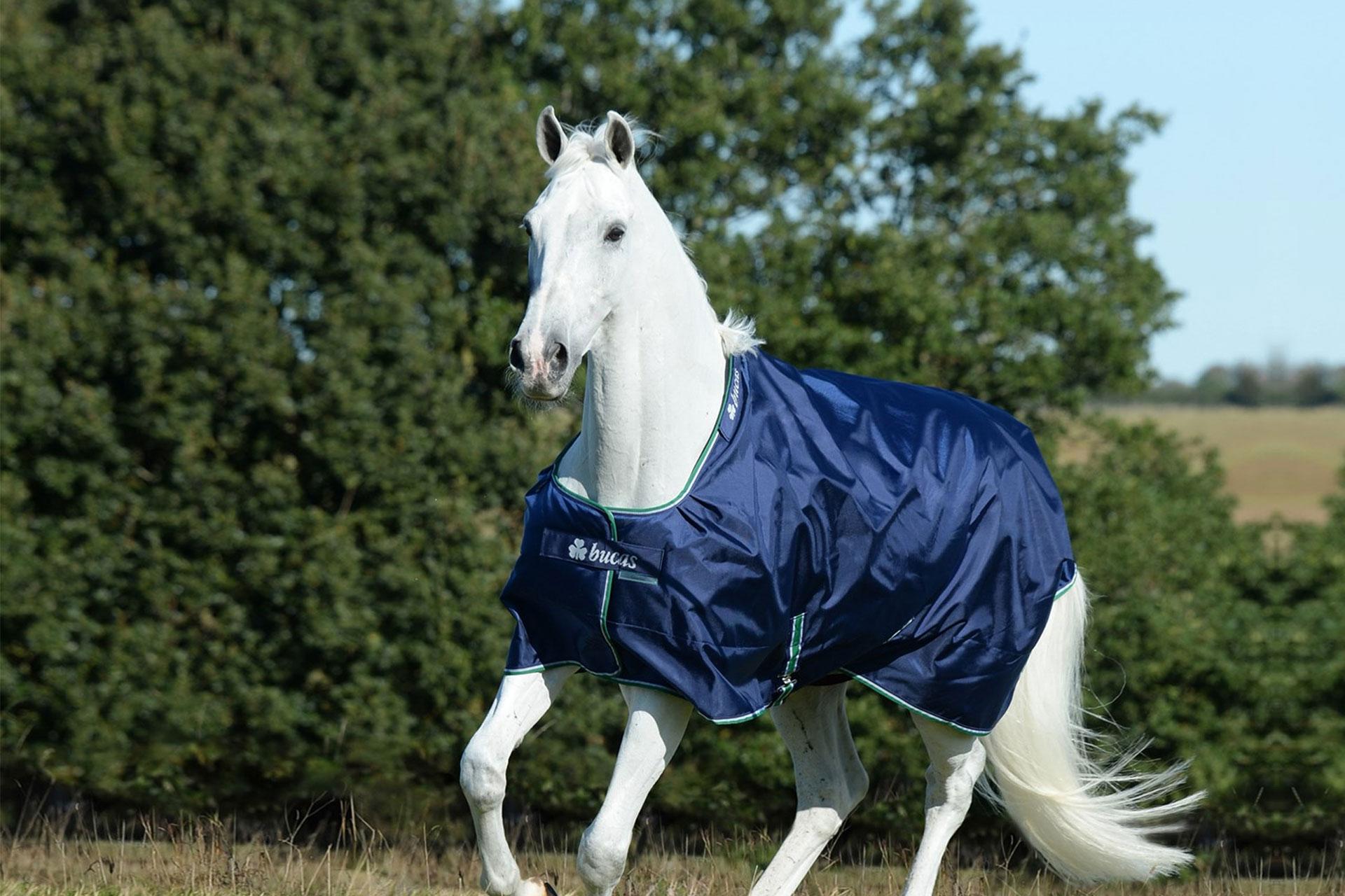 Winterdekens voor paarden en pony's